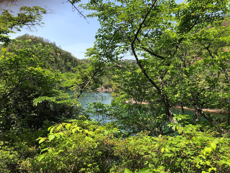f:id:oyakoasobikariyusi:20190511153740j:image