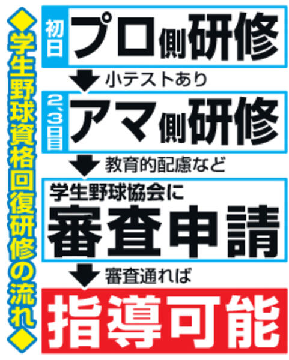 f:id:oyakudachi395:20191214114131p:plain