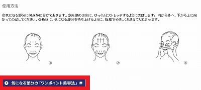 f:id:oyakudachinomori:20160816204122j:plain