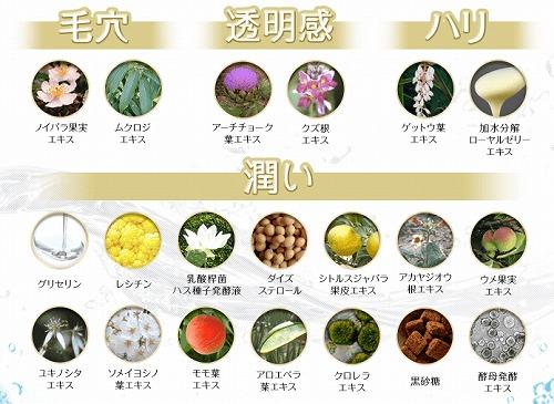 f:id:oyakudachinomori:20170131093419j:plain