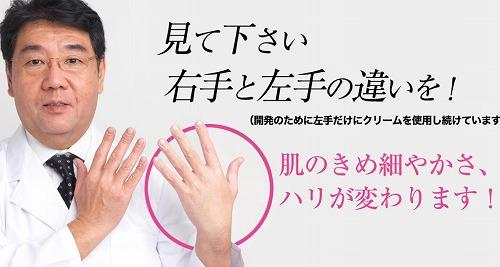 f:id:oyakudachinomori:20170209103930j:plain