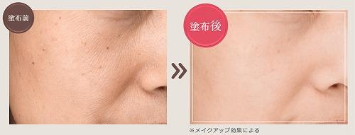 f:id:oyakudachinomori:20170309195644j:plain
