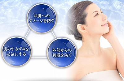 f:id:oyakudachinomori:20170327155414j:plain