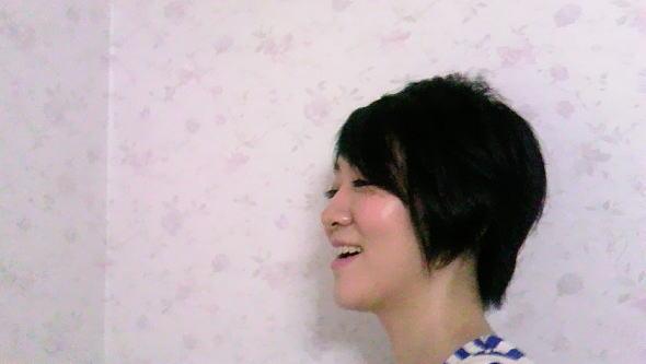 f:id:oyamadoka:20161118001634j:plain