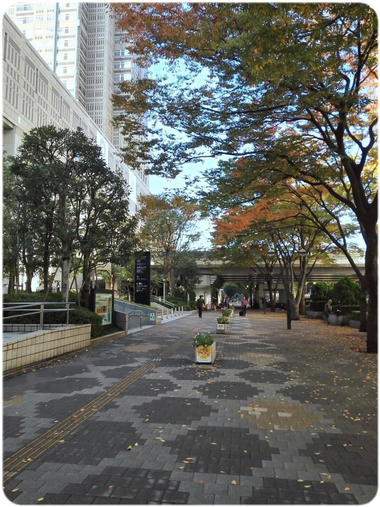 f:id:oyamadoka:20171106183724j:plain
