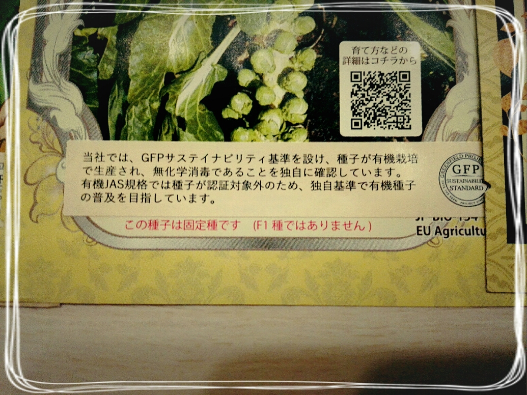 f:id:oyamadoka:20200801143809j:plain