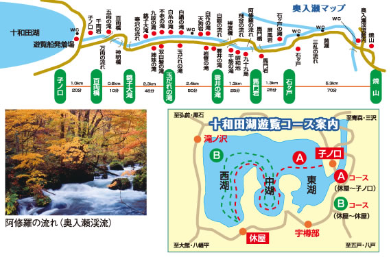 f:id:oyamanobori:20170106204729j:plain