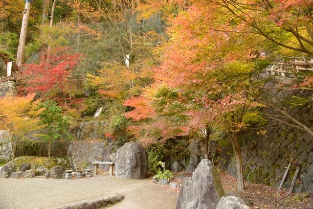 梅ヶ島温泉おゆのふるさと公園の紅葉