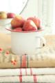 [food][りんご][果物][food|りんご][food|果物] りんご。