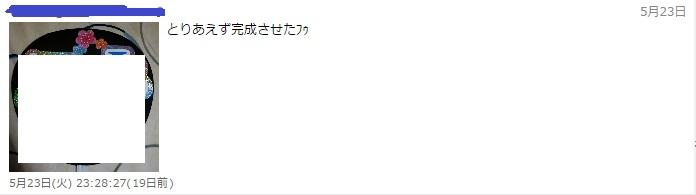 f:id:oyashiro34-hs:20170612170644j:plain