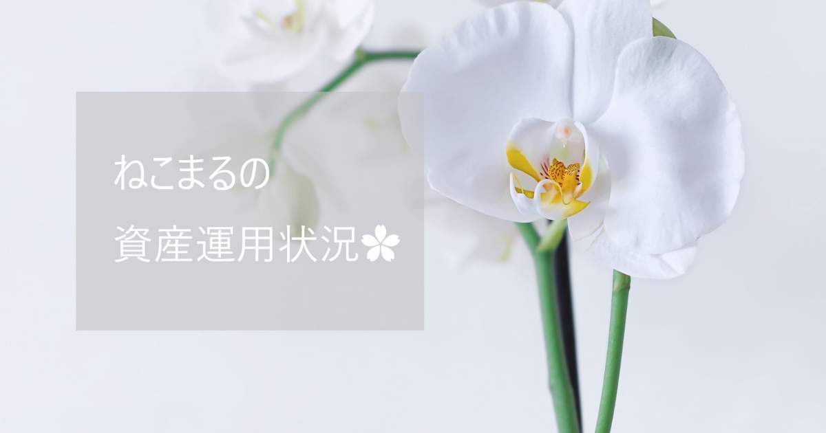 f:id:oyasumi_nekomaru:20210510204618p:plain