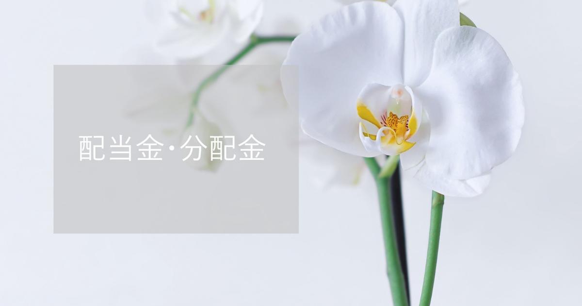 f:id:oyasumi_nekomaru:20210604232141p:plain