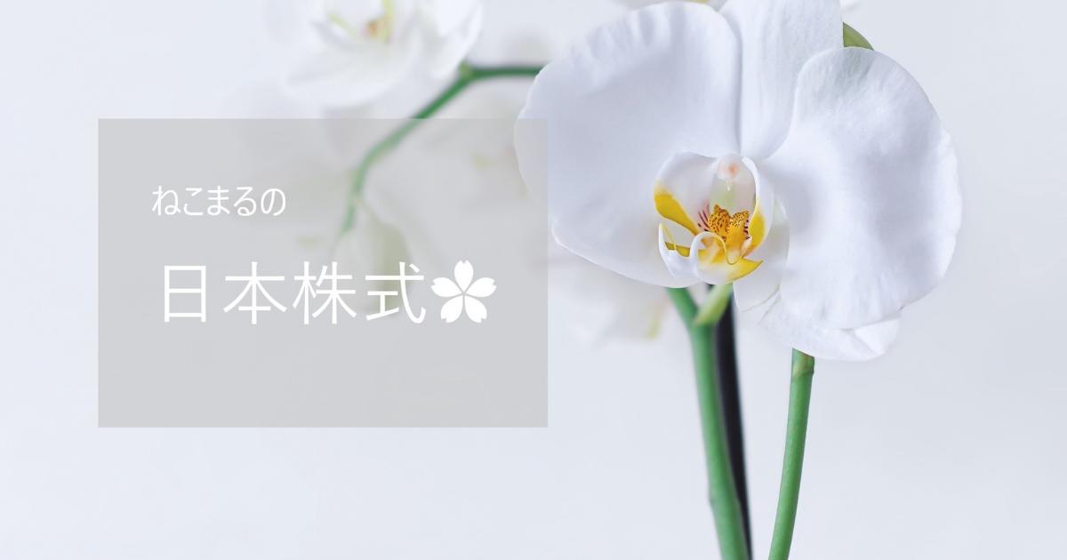 f:id:oyasumi_nekomaru:20210604232807p:plain