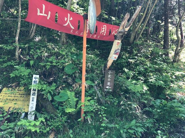 f:id:oyasumiameko:20180527080717j:plain