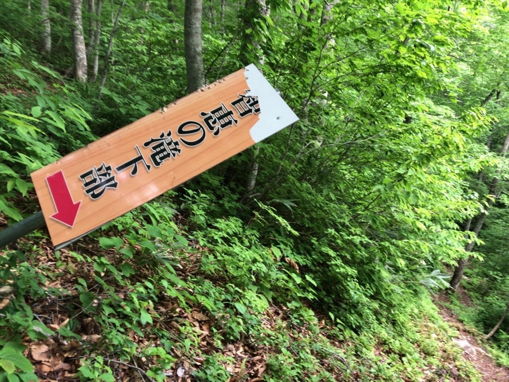 f:id:oyasumiameko:20180608235253j:plain