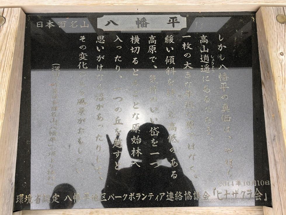 f:id:oyasumiameko:20180609220547j:plain
