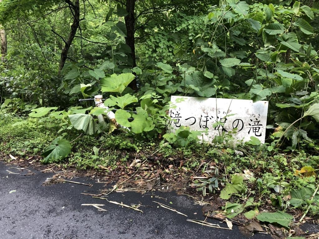 f:id:oyasumiameko:20180614220541j:plain