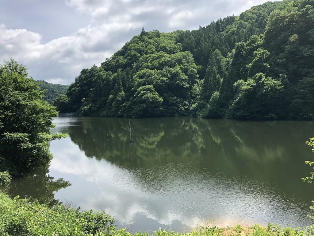 f:id:oyasumiameko:20180727230249j:plain