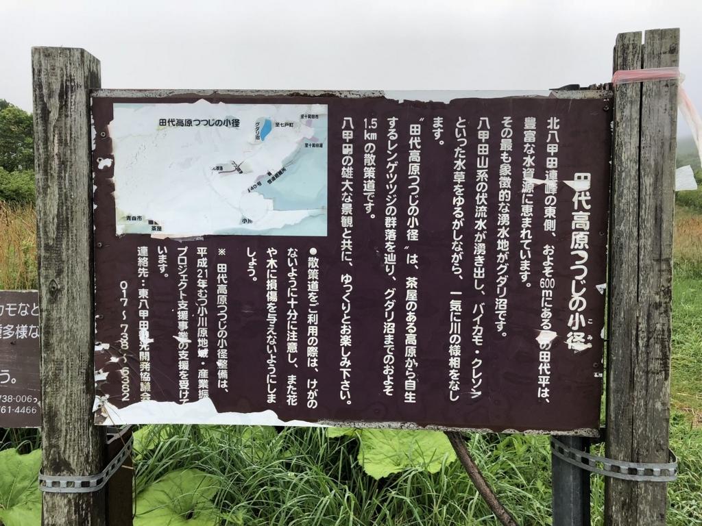 f:id:oyasumiameko:20180731215437j:plain