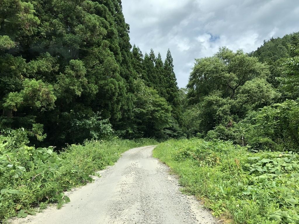 f:id:oyasumiameko:20180830014717j:plain
