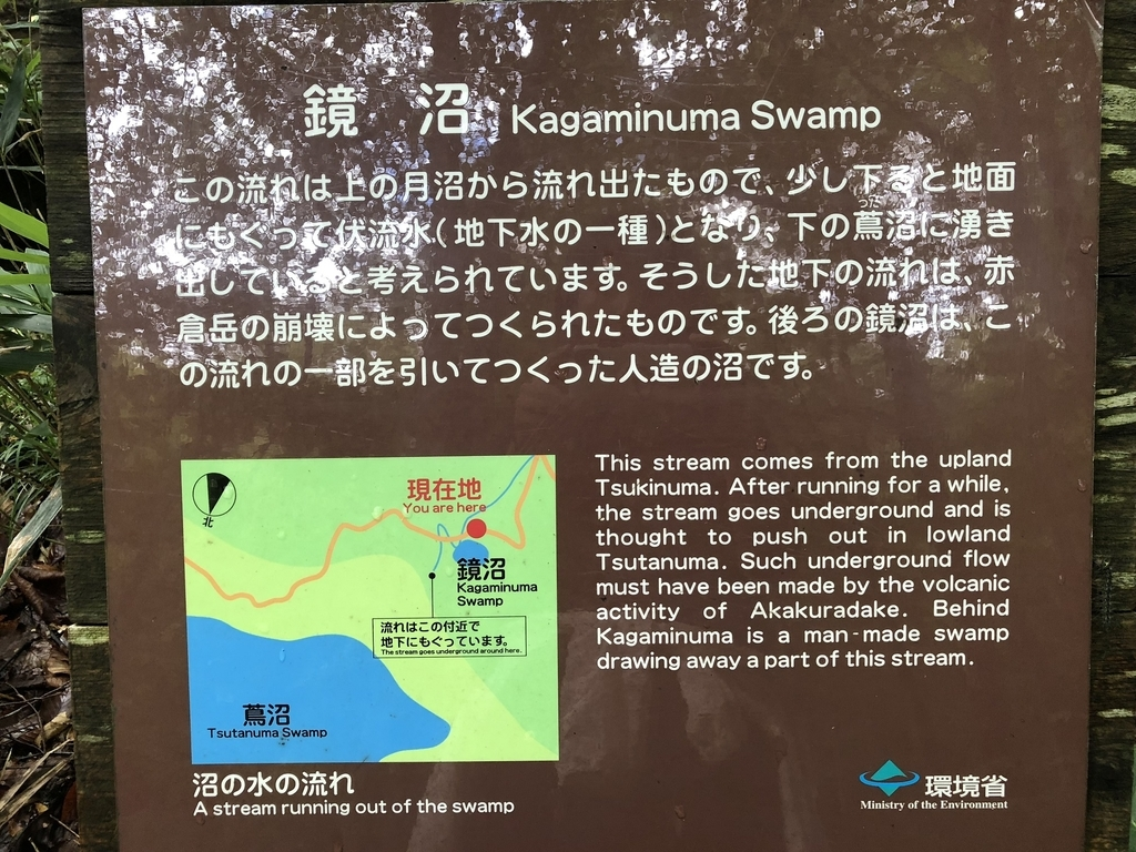 f:id:oyasumiameko:20180916153751j:plain
