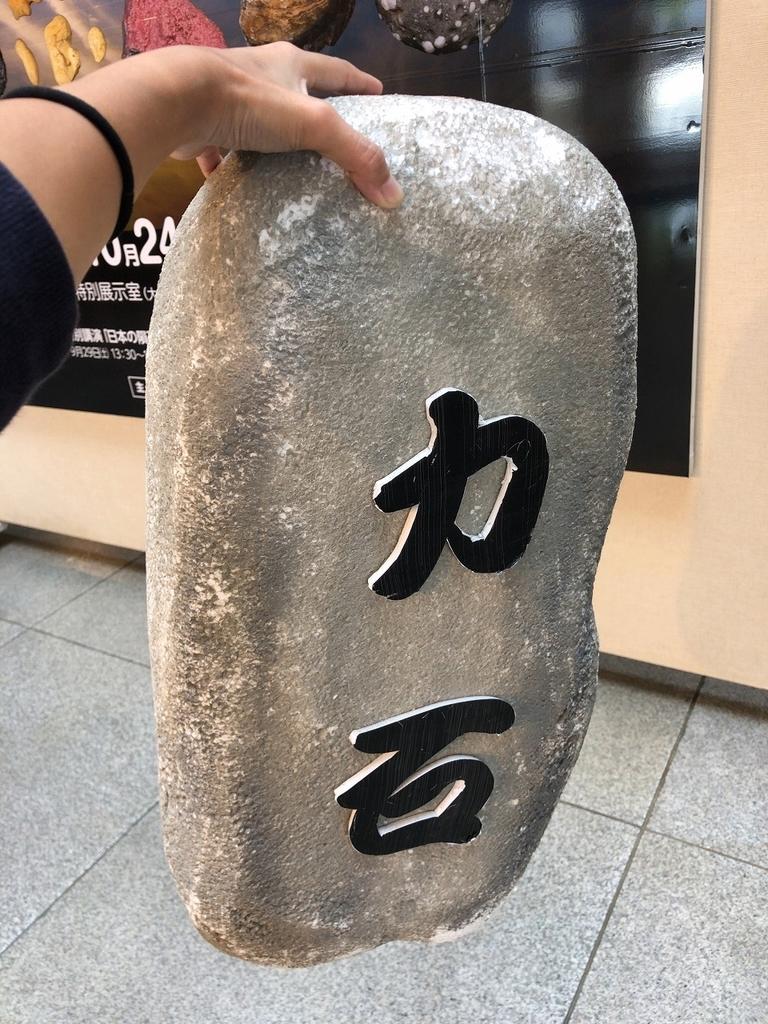 f:id:oyasumiameko:20181002183245j:plain