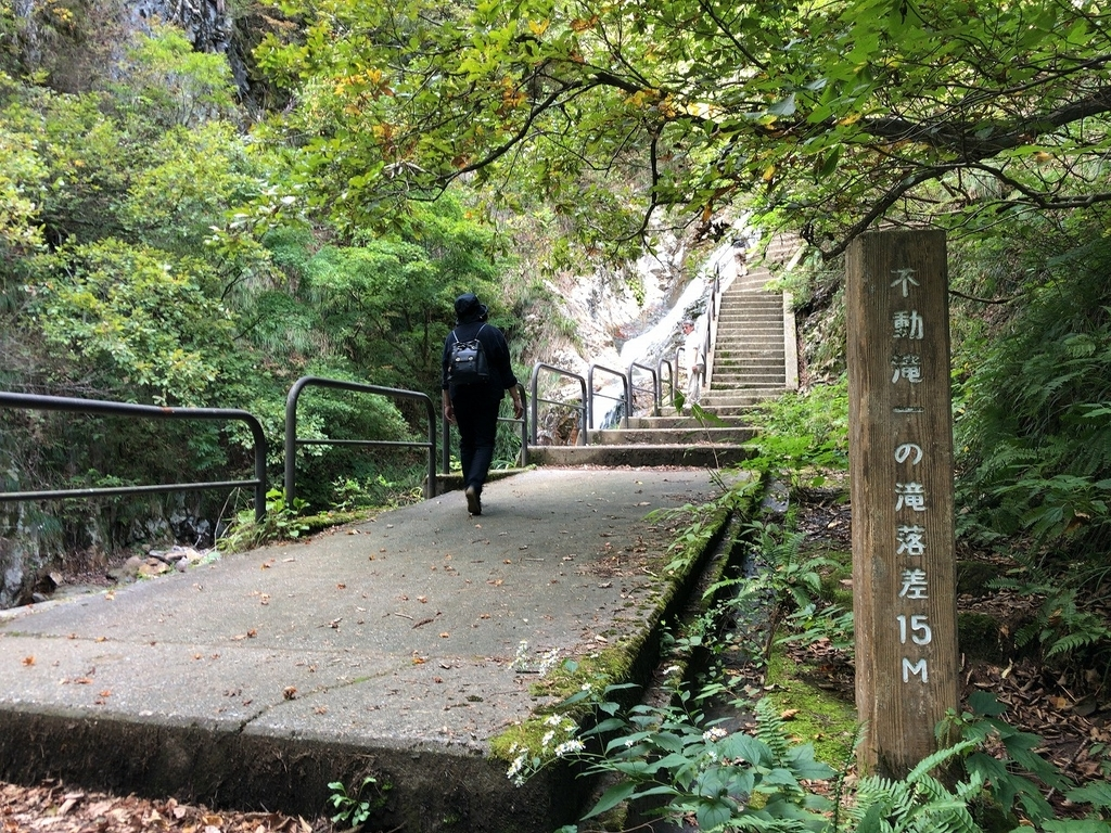 f:id:oyasumiameko:20181015194743j:plain