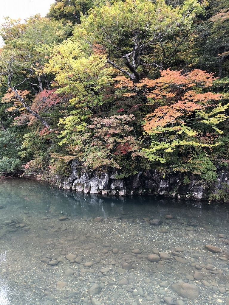 f:id:oyasumiameko:20181025205622j:plain
