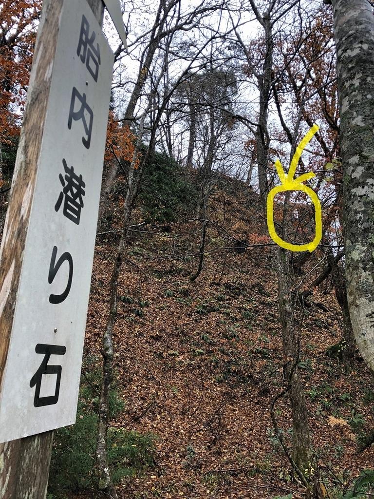 f:id:oyasumiameko:20181118191511j:plain