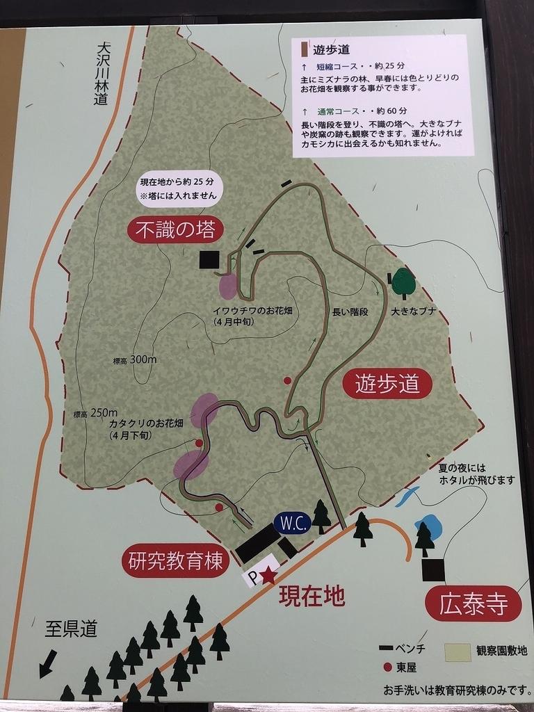 f:id:oyasumiameko:20181124202512j:plain