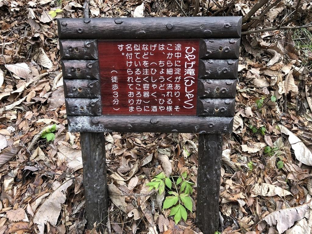 f:id:oyasumiameko:20181204194120j:plain