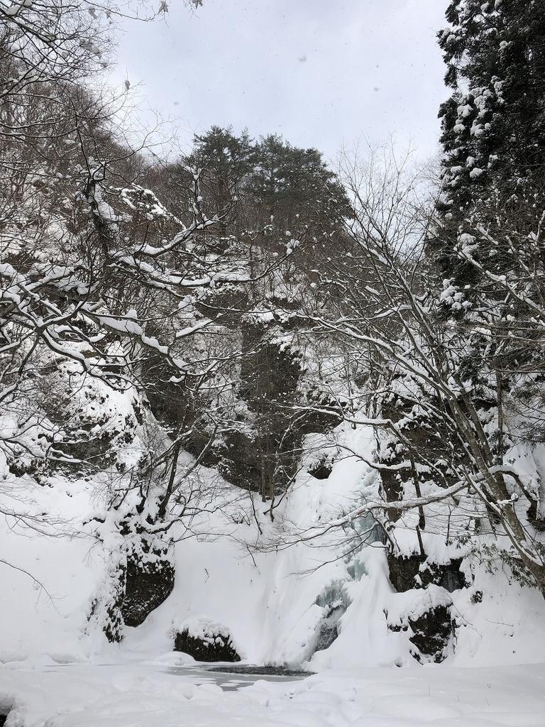 f:id:oyasumiameko:20190219221940j:plain