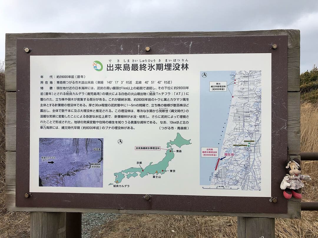 f:id:oyasumiameko:20190323194714j:plain