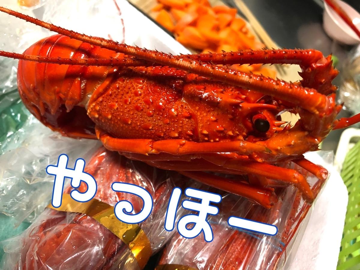 f:id:oyasumiameko:20190425224805j:plain