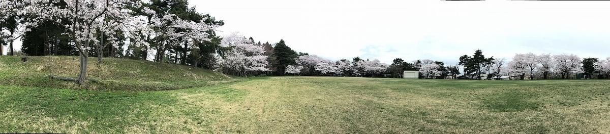 f:id:oyasumiameko:20190426215423j:plain