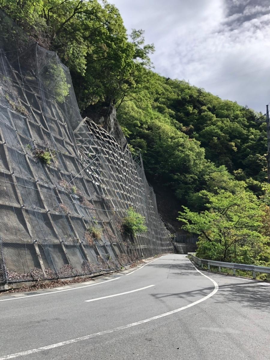 f:id:oyasumiameko:20190512174612j:plain