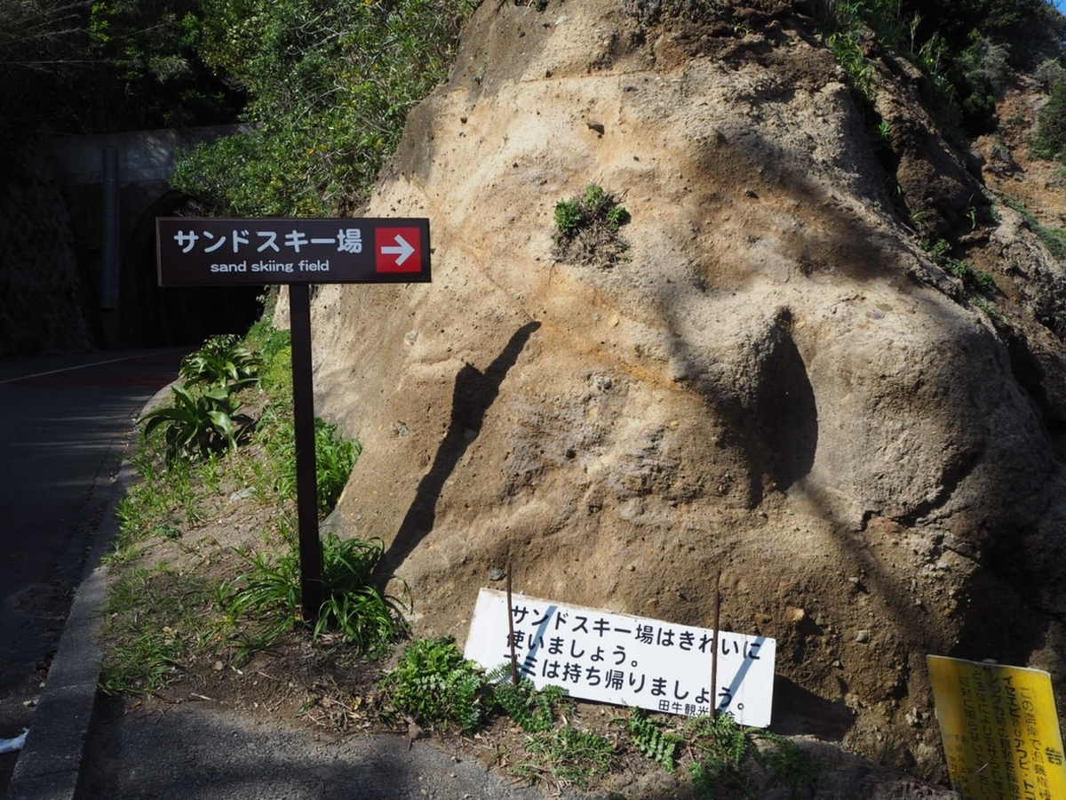 f:id:oyasumiameko:20190521221117j:plain