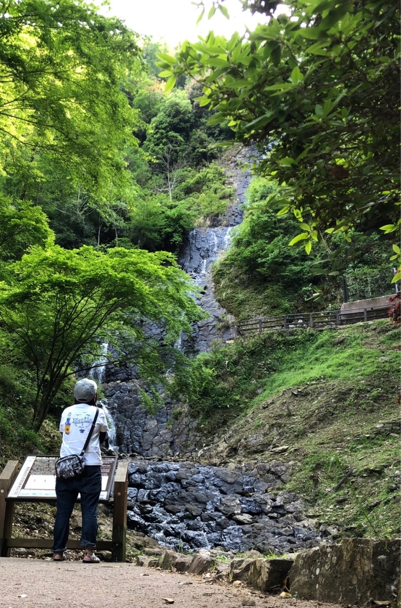 f:id:oyasumiameko:20190528125141j:plain