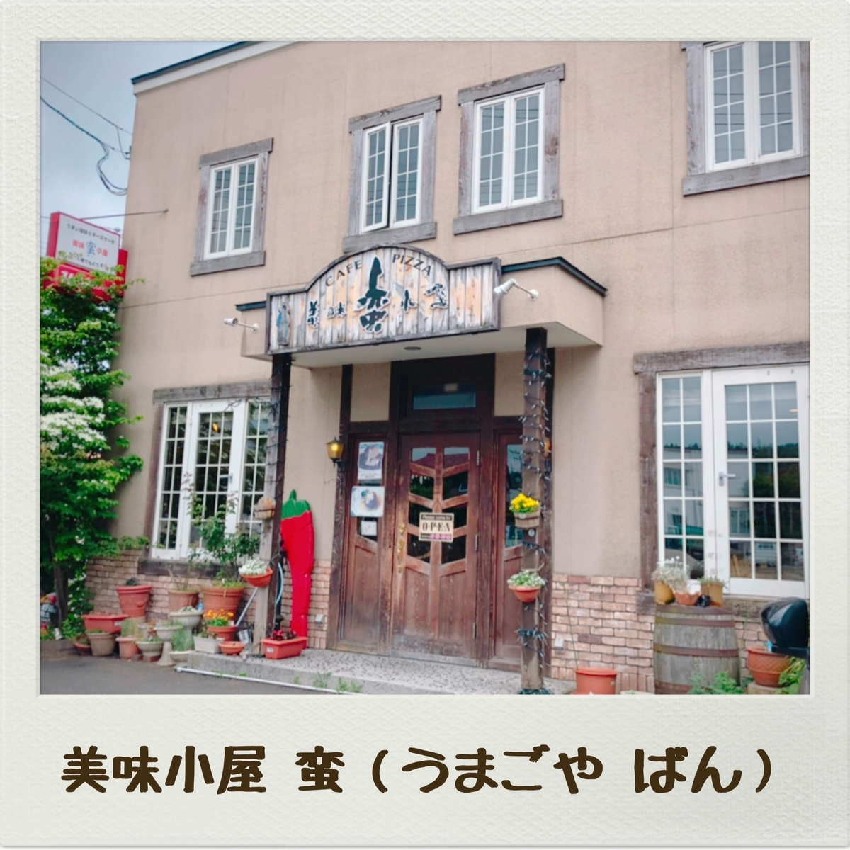 f:id:oyasumiameko:20190617142302j:plain