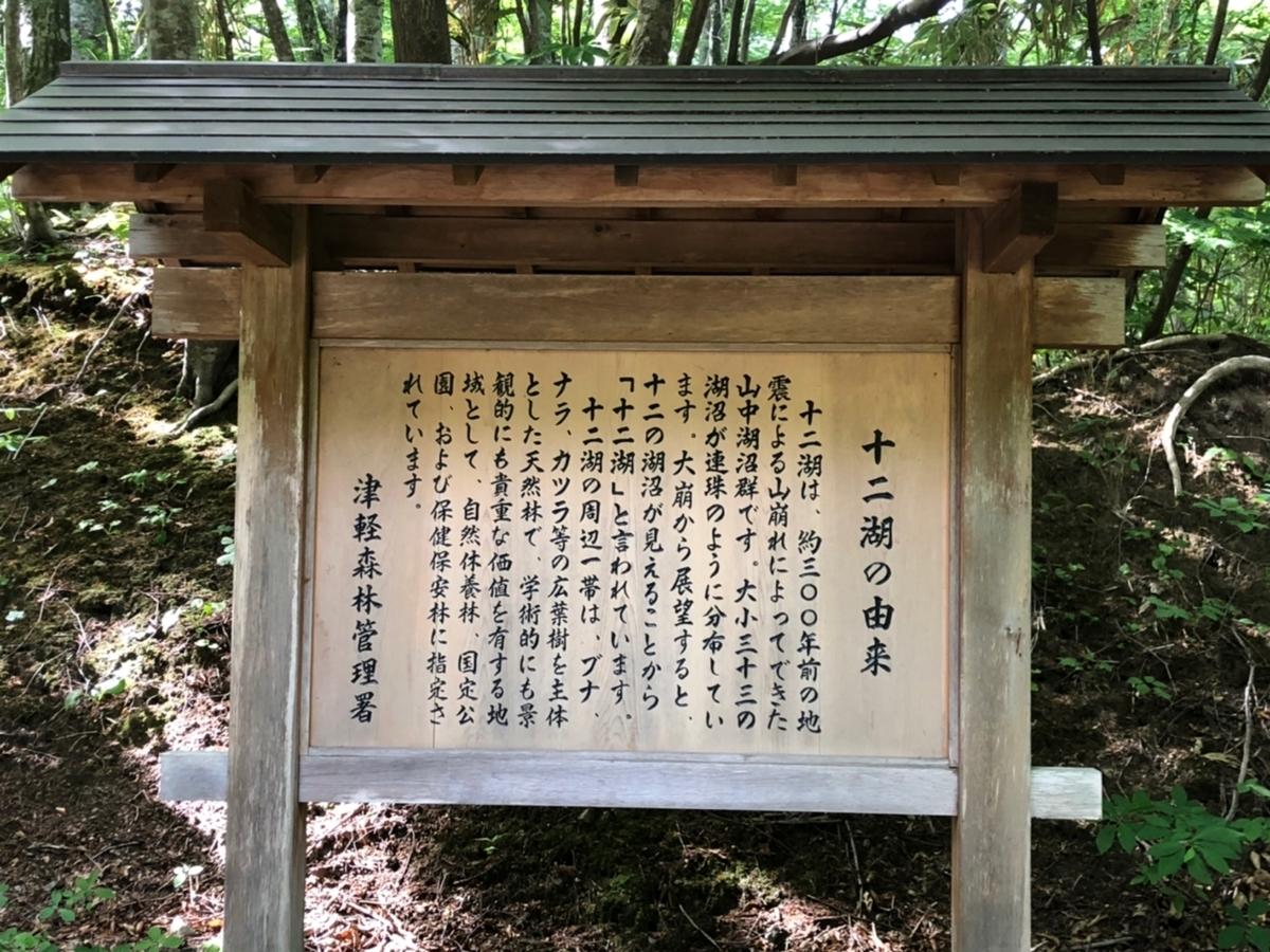 f:id:oyasumiameko:20190623131820j:plain