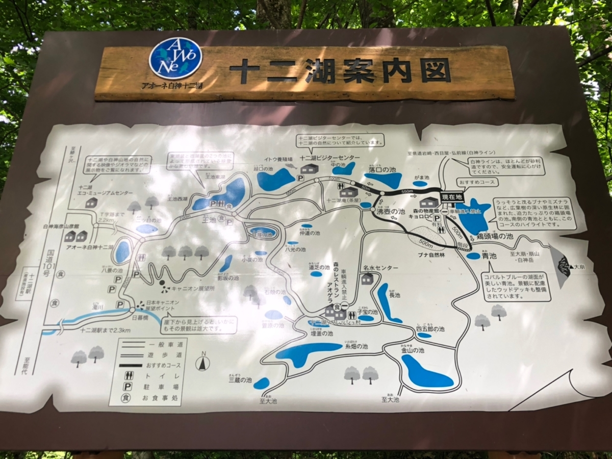 f:id:oyasumiameko:20190623131849j:plain