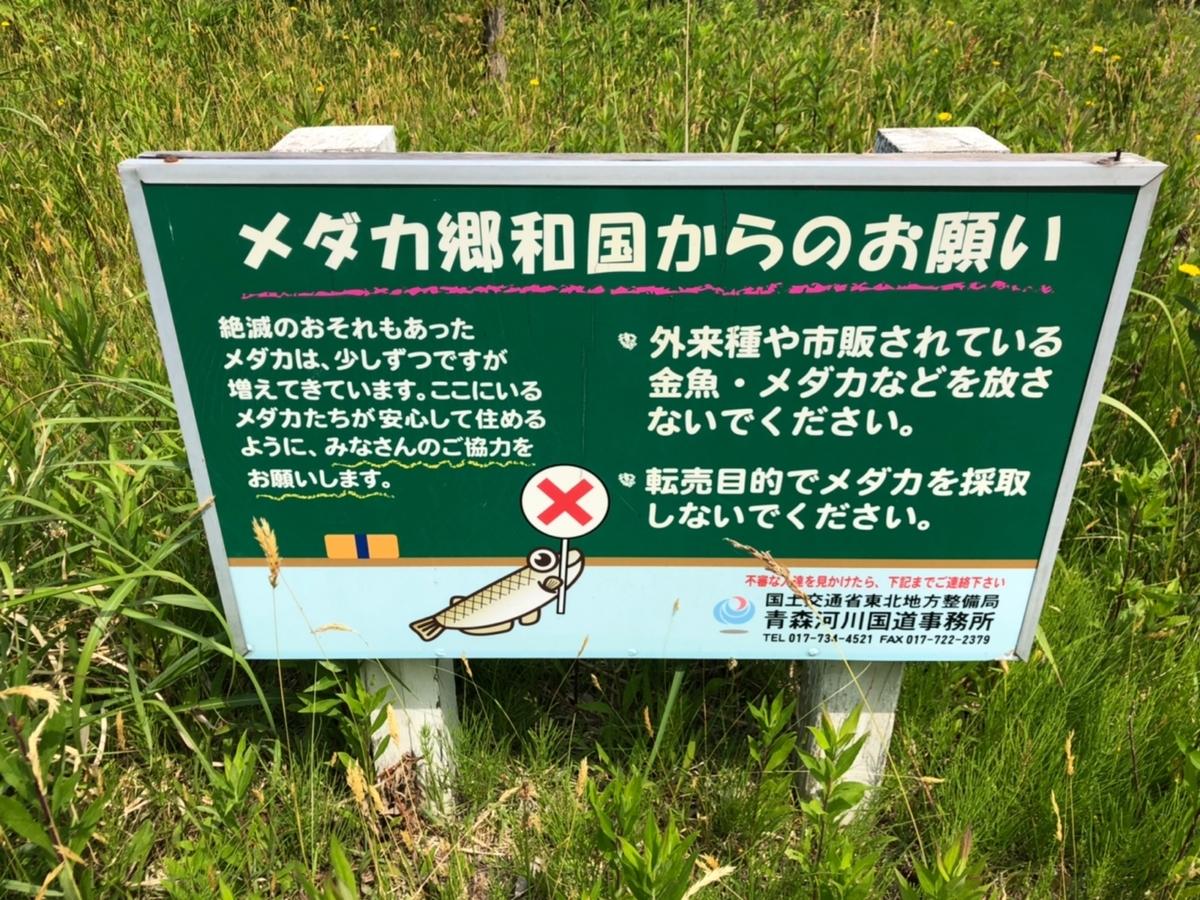 f:id:oyasumiameko:20190624214739j:plain