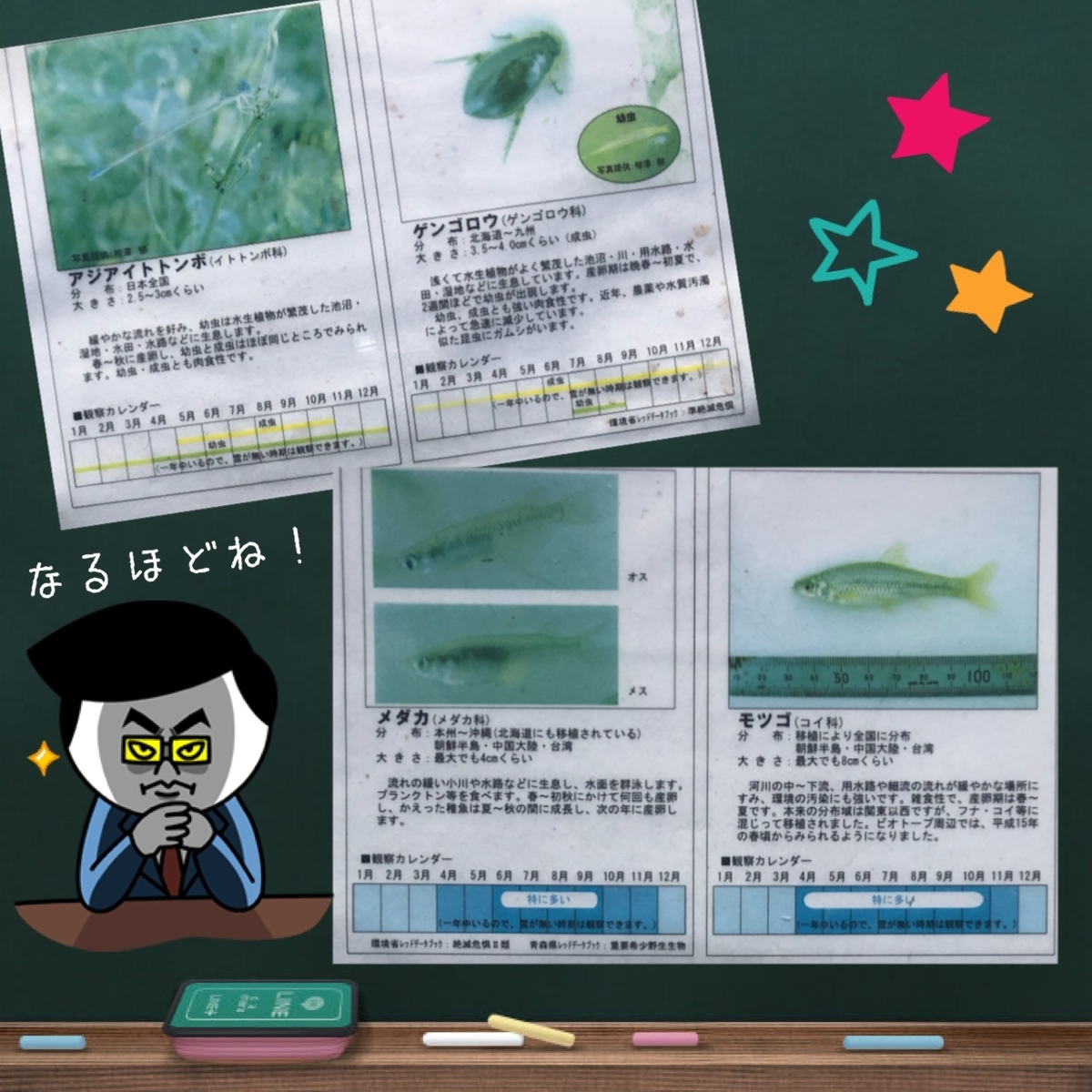 f:id:oyasumiameko:20190624215809j:plain