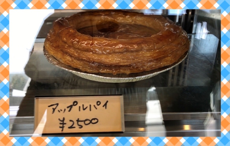 f:id:oyasumiameko:20190625150826j:plain