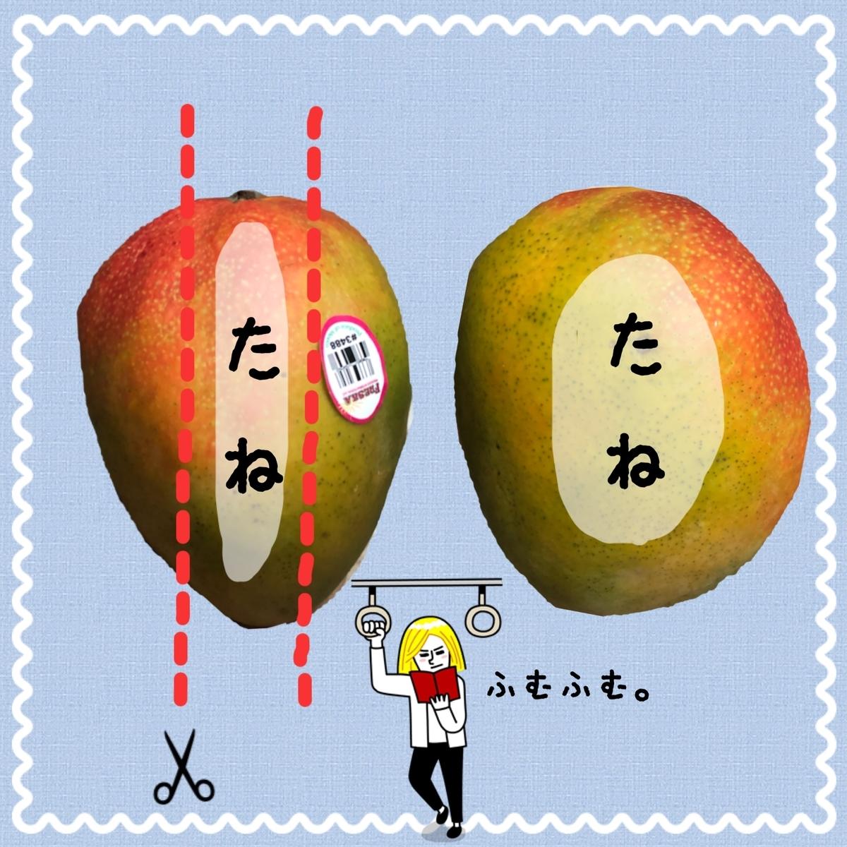 f:id:oyasumiameko:20190724202511j:plain