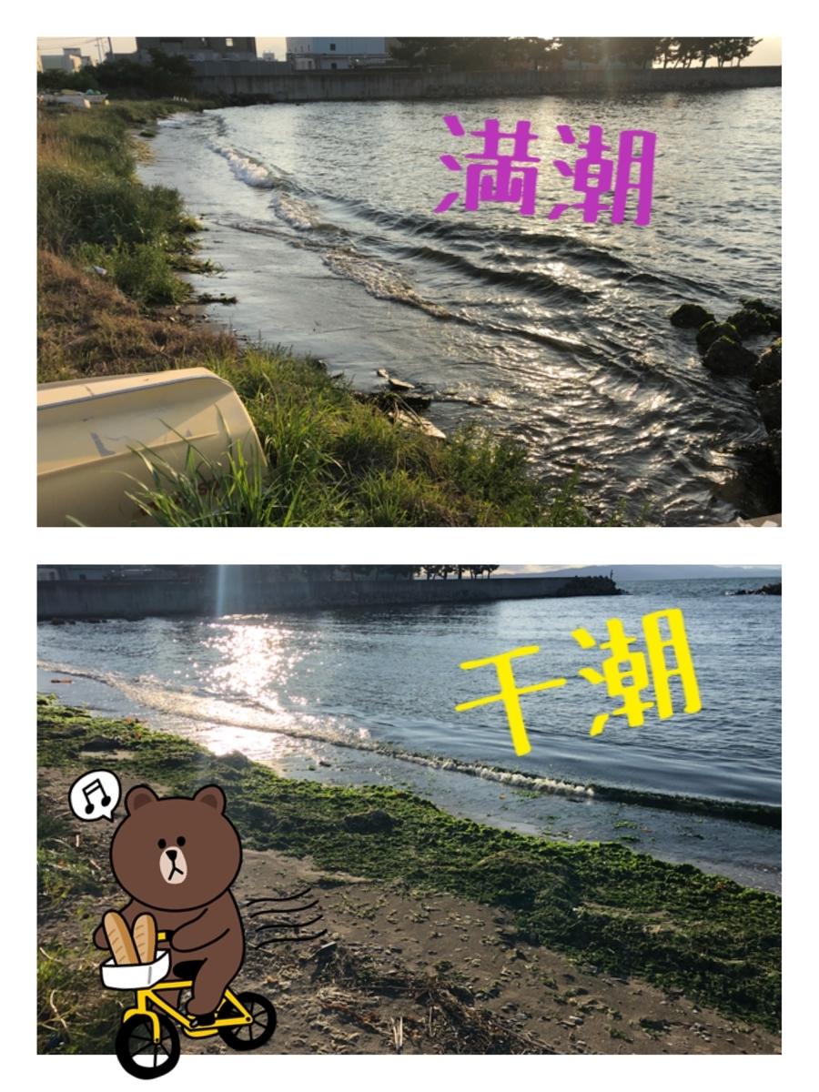 f:id:oyasumiameko:20190825213343j:plain
