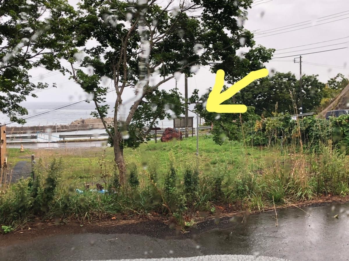 f:id:oyasumiameko:20190912221942j:plain