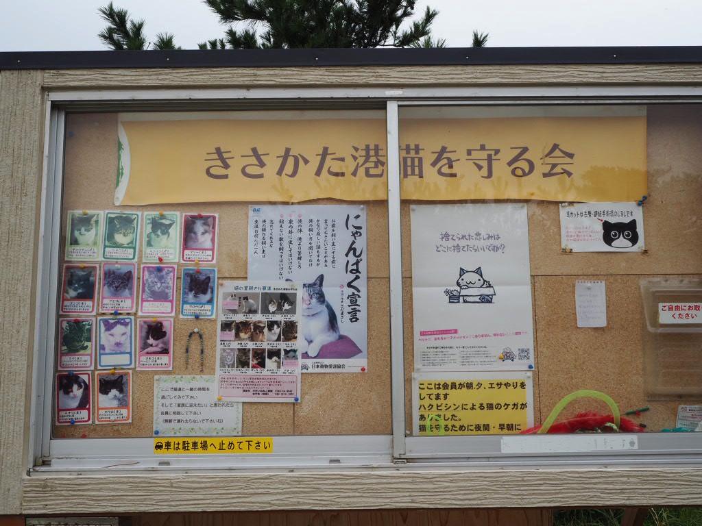 f:id:oyasumiameko:20190930191726j:plain