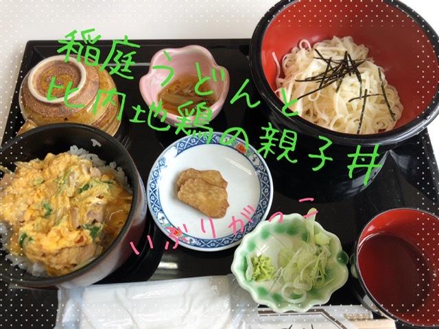 f:id:oyasumiameko:20191028230715j:plain