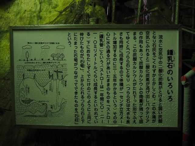 f:id:oyasumiameko:20191115204726j:plain